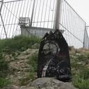 Серый Щербак